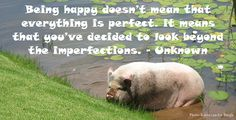 My Intundla Photo & Quote :) Photo Quotes, Im Not Perfect, Happy, Quote Pictures, I'm Not Perfect, Ser Feliz, Happiness, Being Happy