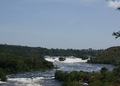 Welcome to Murchison National Park information. This guide will greatly assist you in preparing to visit Murchison Falls, where to stay and what to do.