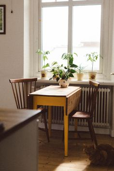 Folding tables are great space savers and are typically easy to find at second hand, vintage, and thrift stores for cheap.