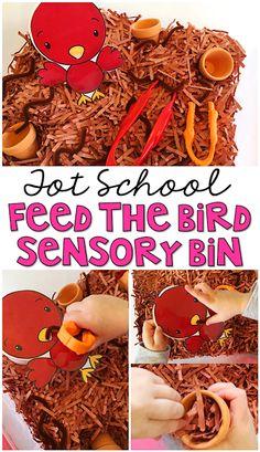 This Feed the Bird Sensory Bin is super engaging and full of fine motor practice for tot school, preschool, or the kindergarten classroom.