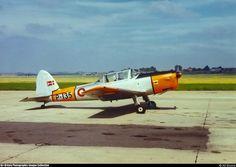 De Havilland Canada DHC-1 Chipmunk T20, P-135, Royal Danish Air Force