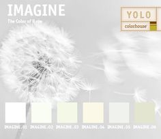 YOLO Colorhouse IMAGINE color family #roomandboard #yolocolorhouse #annies