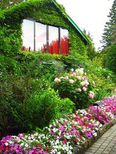 Butchart Gardens, Victoria BC T. Buchart Gardens, Sunken Garden, Voyage Europe, Garden Cottage, Garden Pictures, Parcs, Home And Deco, Belleza Natural, Dream Garden