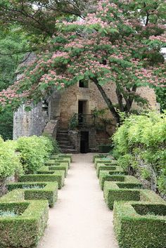 At Château de Losse, boxwood is clipped in low hedges in versions of Greek key patterns that add structure and rhythm to the paths.