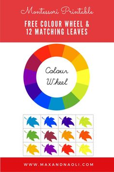 best montessori free printables  downloads images in   free montessori inspired printable of colour wheel   matching leaves   download now
