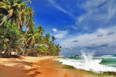 How to Plan a Cheap Holiday in Sri Lanka - With these three simple tips, you can easily maximize your travel budget in Sri Lanka.