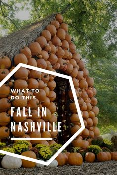 Things to Do in Nashville This Fall Nashville Vacation, Tennessee Vacation, Need A Vacation, Nashville Tennessee, Nashville Events, Living In Nashville, Local Events, Fall Vacations, Dream Vacations