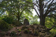 Blarney Castle gardens, Ireland