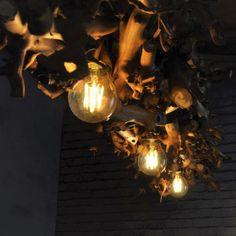 Natuurlijke sfeerverlichting met natuurlijke takken. www.decoratietakken.nl heeft een groot assortiment in verschillende houten hang lampen.  Voor onze houten lampen worden verschillende houtsoorten gebruikt Groot, Light Bulb, Lighting, Home Decor, Decoration Home, Room Decor, Light Globes, Lights, Home Interior Design