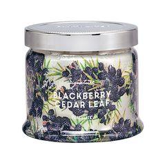 Pots à bougie 3 mèches FEUILLE DE CÈDRE & MÛRE – Les essences automnales d'épicéa et de bouleau s'associent à la douce richesse de la mûre et du houx pour créer une merveille d'arômes.