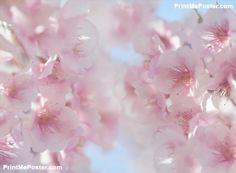Cherry blossom poster #poster, #printmeposter, #mousepad, #tshirt