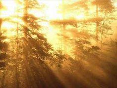 Forest Sunrise, New Hampshire, USA, free computer desktop wallpaper Desktop Background Images, Backgrounds, Healthy Shopping, Spiritual Development, Wayne Dyer, Good Morning Wishes, Mind Body Soul, Inspirational Videos, Health Coach