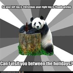 Bad Pickup Line Panda: Are You Stuffed? - Cheezburger