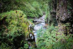 Plongez dans l'Amazonie basque en s'immisçant dans les Gorges de Kakuetta à Sainte-Engrâce. L'occasion de passer un week-end à Iraty au Pays basque.