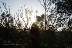 Silhouette by alessioproto1996