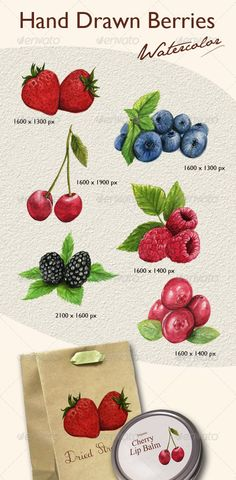 Hand Drawn Berries  #GraphicRiver         A set of 6 berry pictures. All painted by hand with watercolor. Good for packaging, printing products, website, t-shirt, etc. All in PSD with transparent background! Easy and ready to use! PSD file.     Created: 24August12 GraphicsFilesIncluded: PhotoshopPSD Layered: Yes PixelDimensions: 1600x1600 PrintDimensions: 5.333x5.333 Tags: berries #blackberry #blueberry #cherry #cosmetics #cranberry #drawing #flavor #fragrance #fruit #graphicelements…