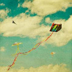 Give a kite to anyone, of any age. They will marvel at its beauty and simplicity.
