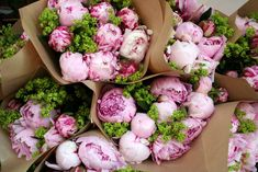 """Peonies are one of my very favorite flowers, but you can tell me that I sound exactly like everyone else! Peonies are gorgeous, and I look forward to noticing the blooms on bush outdoors. However, despite their beauty, peonies are known for being a bit """"finicky."""" Here's how to grow the prettiest peonies, with very … Read More"""