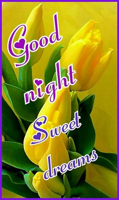 Good night Good Night I Love You, Good Night Image, Good Night Quotes, Good Morning Good Night, Morning Wish, Good Night Greetings, Good Night Wishes, Sweet Night, Good Night Sweet Dreams