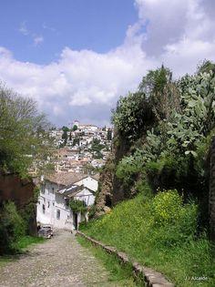 Granada, Andalucía, Spain. Photographer J.I.Alcalde. http://www.costatropicalevents.com/en/costa-tropical-events/andalusia/cities/granada.html