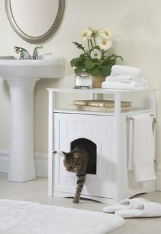 8 clever ways to hide your cat's litter box