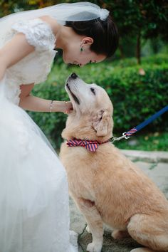 This bride's beloved dog walks her down the aisle in a bow tie // Andrew and Jacelyn's Smart and Bright Wedding