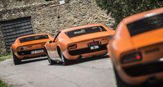 Wilde Stierjagd bei der Lamborghini Miura Anniversary Tour 2016 #lamborghinivintagecars