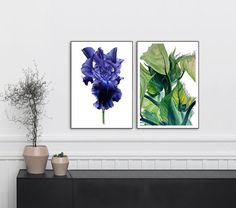 Large botanic print. (11 x 16 or 13 x 19inch available)  This is a fine art print taken from my original watercolour painting. It is printed onto Somerset Enhanced Archival fine art paper, using archival inks that wont fade in time. It comes sealed in a poly-envelope and is sent to you in a hard -backed envelope.  The print is also signed and dated on the back. I hope you like it, thanks for looking.  The watermark will not appear on the printed image.  A smaller print (8 x 11 inch) is also…