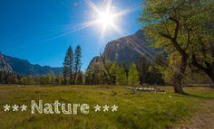 "Digital photography - Yosemite Valley ""Nature"" by ShinavaPhotography on Etsy"