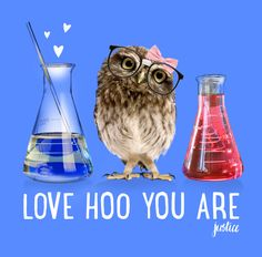 ...says the wise owl in a pretty pink bow.