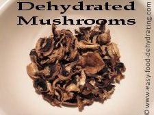 Dehydrated mushrooms. More info. at wwww.easy-food-dehydrating.com/dehydrating-mushrooms.html