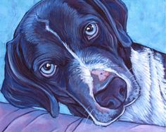 Catahoula Painting