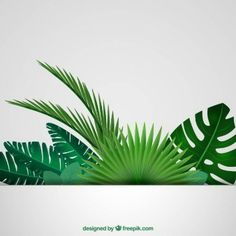 New palm tree vector leaves tropical Ideas Palm Tree Background, Paper Background, Jungle Party, Jungle Theme, Tropical Leaves, Tropical Plants, Tropical Forest, Paper Leaves, Paper Flowers