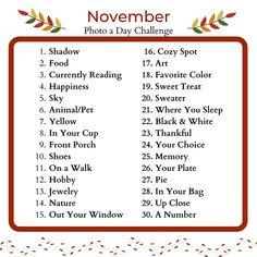 November 2020 Photo A Day Challenge