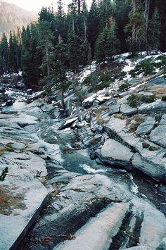 Sequoia National Park - Megan Brim