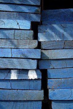 Blue boards. Vera Pavaneli.