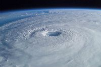 The Ultimate Hurricane Party: Your Guide to Staying Drunk and Happy This Storm Season - Cultist