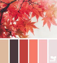 Autumn Glow | design seeds | Bloglovin'