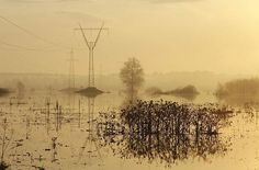 """""""A pylon is reflected in floodwater near the village of Bogolyubovo, some 118 miles east of Moscow."""" CSM"""