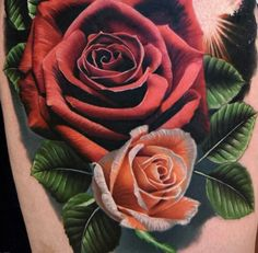 Phil Garcia Roses