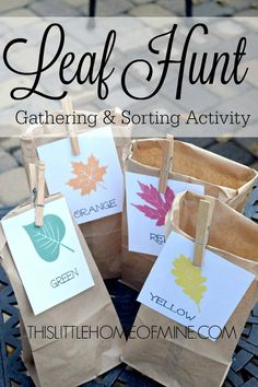 This Fall Leaf Hunt is the perfect activity for teaching your pre-schooler how to gather and sort items of different color!