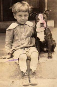 Vintage Boston Terrier