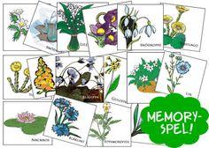 Våren - blomguide, memoryspel, vårsånger