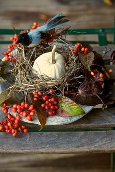 Decorating with Pumpkins - The Daily Basics