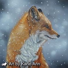 Fox in a flurry fine art print from Karie-Ann Cooper. Archival prints with certificate of authenticity direct from the artist. Free worldwide postage.