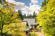 The age-old road leading to Kiyomizu Temple had turned into a river of people. Accents and languages from across the world filled the shop-lined slope, as