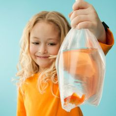 How To Care For Your Carnival Goldfish http://www.readersdigest.ca/pets/care/how-care-your-carnival-goldfish