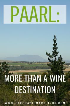 Stellenbosch, Franschhoek, Paarl, Tulbagh, and Wellington form the backbone of the Cape Winelands. But it's the town of Paarl that surprised us the most; offering more than wine tasting. Wine Tasting, Small Towns, South Africa, Cape, Road Trip, Beach, Travel, Outdoor, Mantle