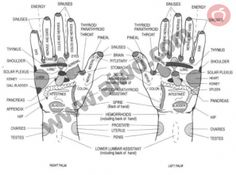 Reflexology points on Hands