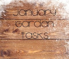 14 Garden Tasks to Accomplish in January - GardenBunch Outside Decorations, Food Photography Tips, Bamboo Cutting Board, Gardening Tips, January, Edible Garden, Blog, Growing Vegetables, Homestead